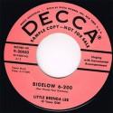 Doodle Bug Rag / Bigelow